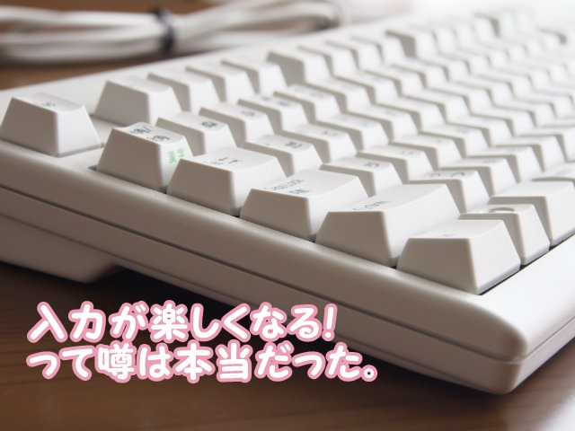 ついに購入!東プレのキーボード Realforce キー荷重30g「SJ38D0」でブログを書くのが楽しくなったよ